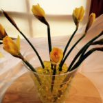 Place the daffodils in the beads